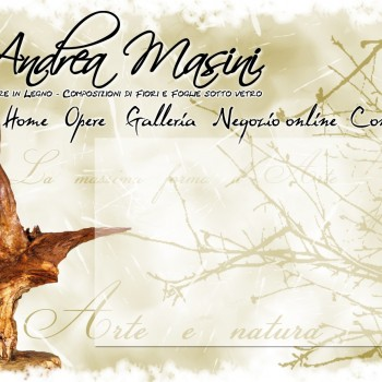 Andrea Masini - Website